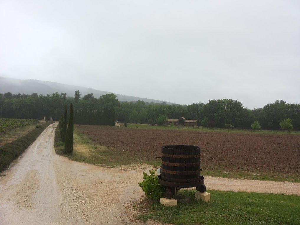 Charles-Peguy-Costa-Vin (2)